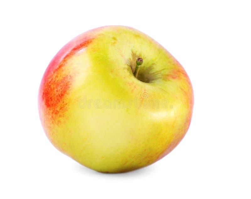 Una mela gialla perfetta con i punti rossi luminosi, su un fondo bianco Frutta succosa e nutriente Una prima colazione salutare fotografie stock libere da diritti