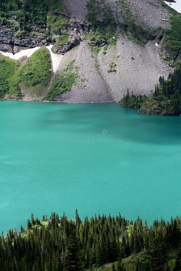 Una mirada más atenta en el lago Grinnell en Parque Nacional Glacier fotografía de archivo libre de regalías