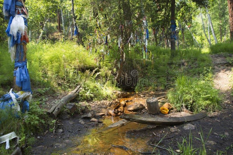 Una molla santa di acqua con le proprietà medicinali fotografie stock