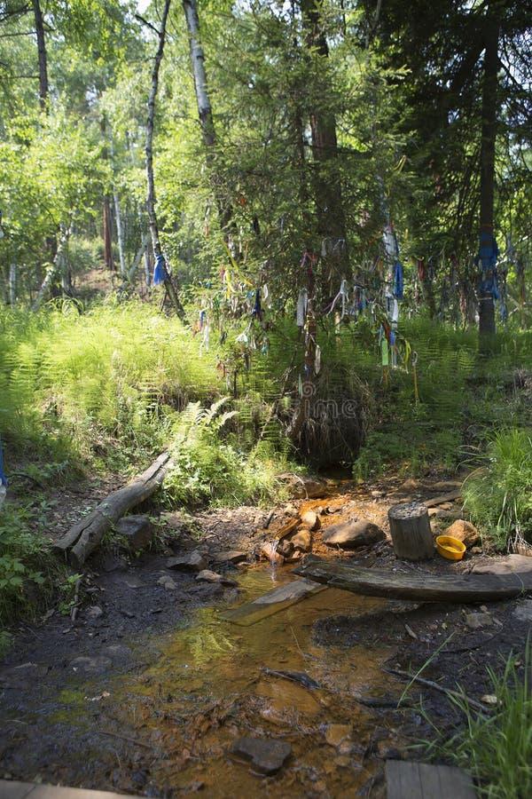 Una molla santa di acqua con le proprietà medicinali fotografie stock libere da diritti