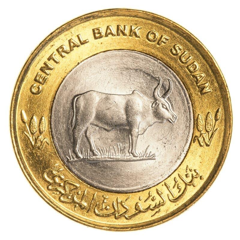 una moneta sudanese da 25 piastre fotografia stock libera da diritti