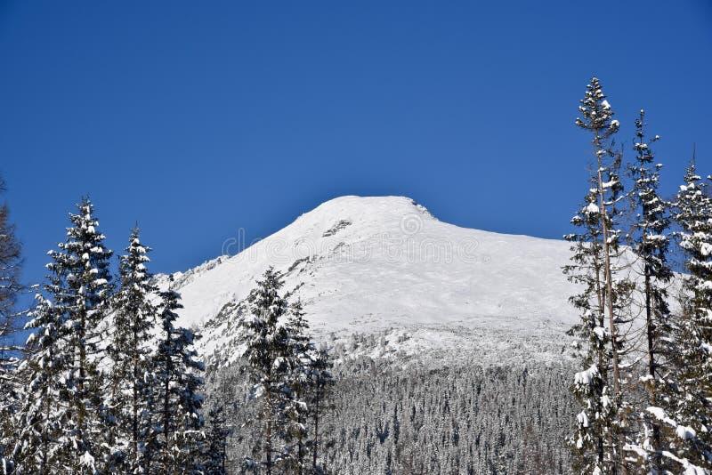 Una montaña en alto Tatras en Eslovaquia cubrió en nieve fotografía de archivo