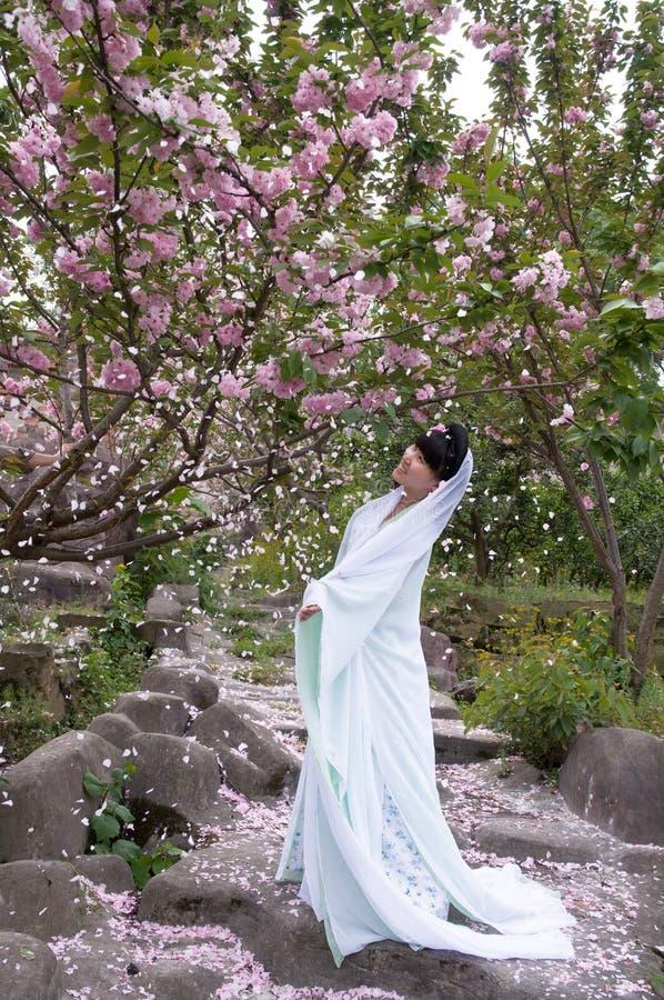 Una muchacha china en la lluvia de pétalos imágenes de archivo libres de regalías