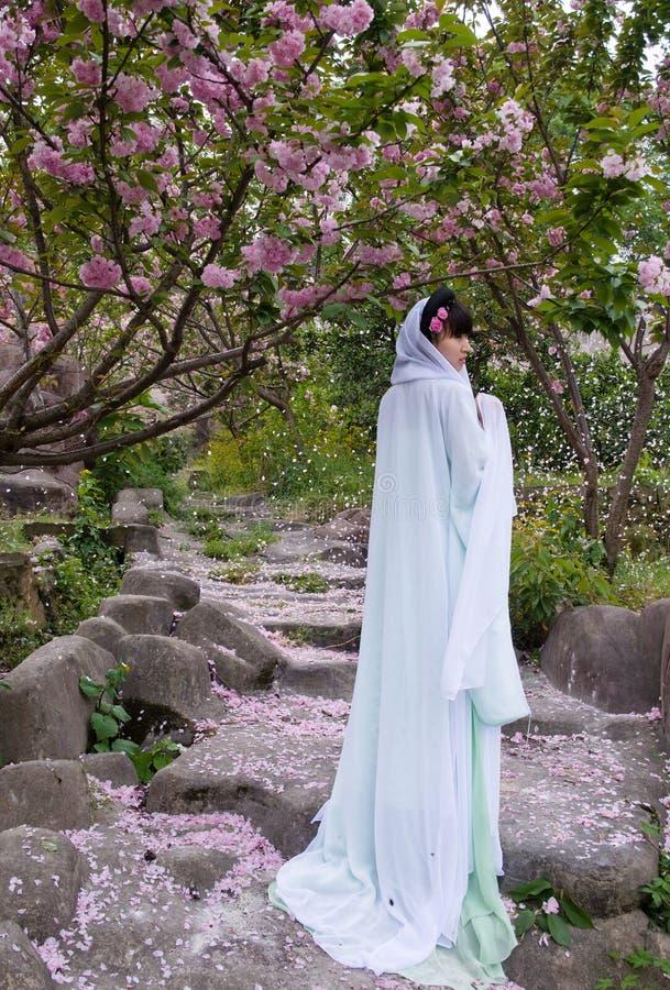 Una muchacha china y pétalos de la flor de cerezo fotos de archivo