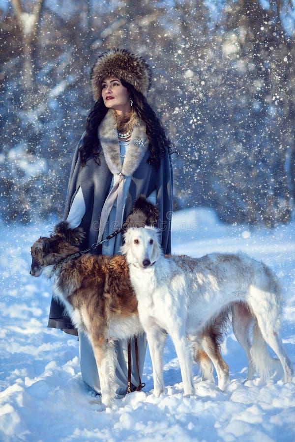Una muchacha con los galgos en la nieve foto de archivo