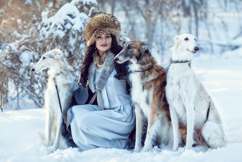 Una muchacha con los galgos en la nieve imagen de archivo