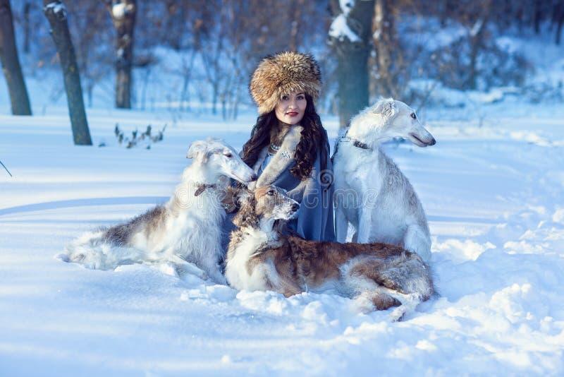 Una muchacha con los galgos en la nieve fotografía de archivo
