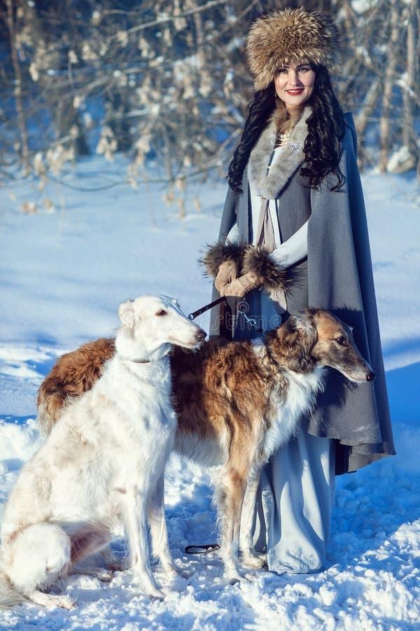 Una muchacha con los galgos en la nieve fotografía de archivo libre de regalías