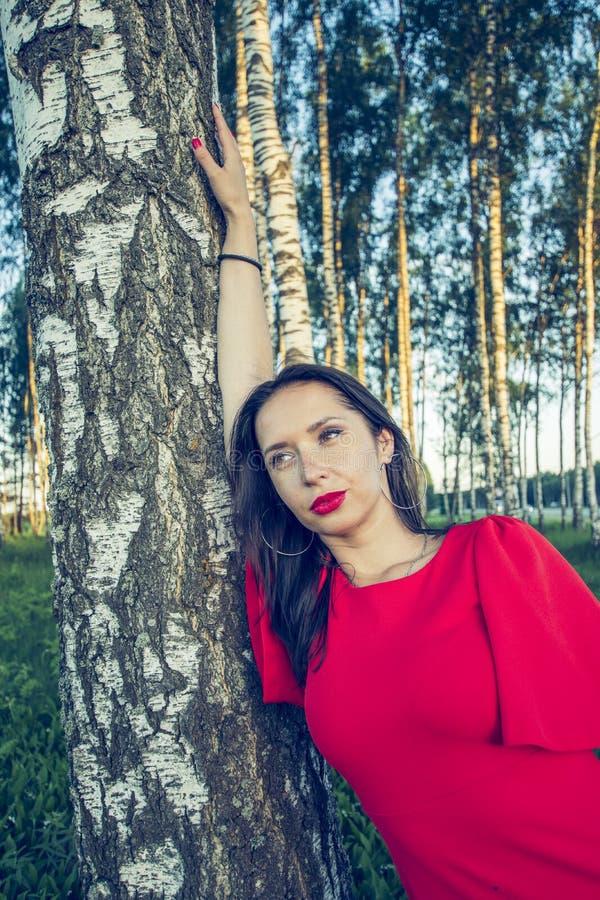 Una muchacha con los labios rojos en un estilo rojo de la voga del vestido se está colocando en una arboleda del abedul imágenes de archivo libres de regalías