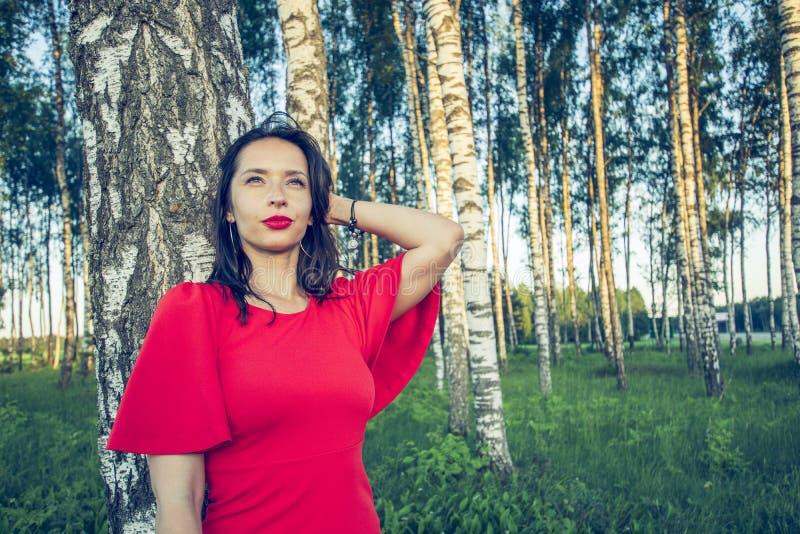 Una muchacha con los labios rojos en un vestido rojo se está colocando en una arboleda del abedul que sueña el holdin su mano cer foto de archivo