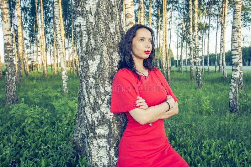 Una muchacha con los labios rojos en un vestido rojo se está colocando en un estilo de la voga de la arboleda del abedul foto de archivo libre de regalías