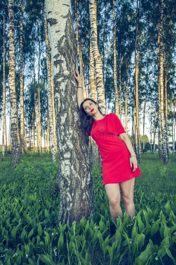 Una muchacha con los labios rojos en un vestido rojo se está colocando en un estilo de la voga de la arboleda del abedul imágenes de archivo libres de regalías