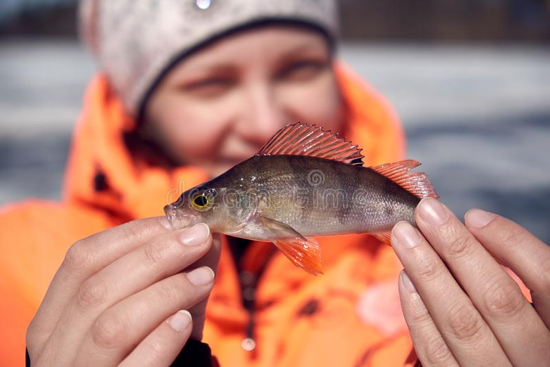 Una muchacha con una perca en la pesca fotos de archivo