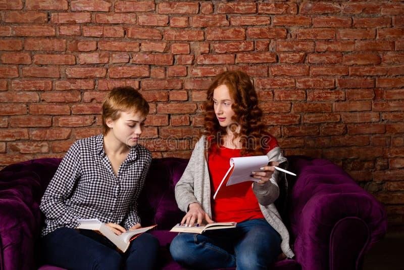 Una muchacha del estudiante explica otra cierta tarea fotos de archivo libres de regalías