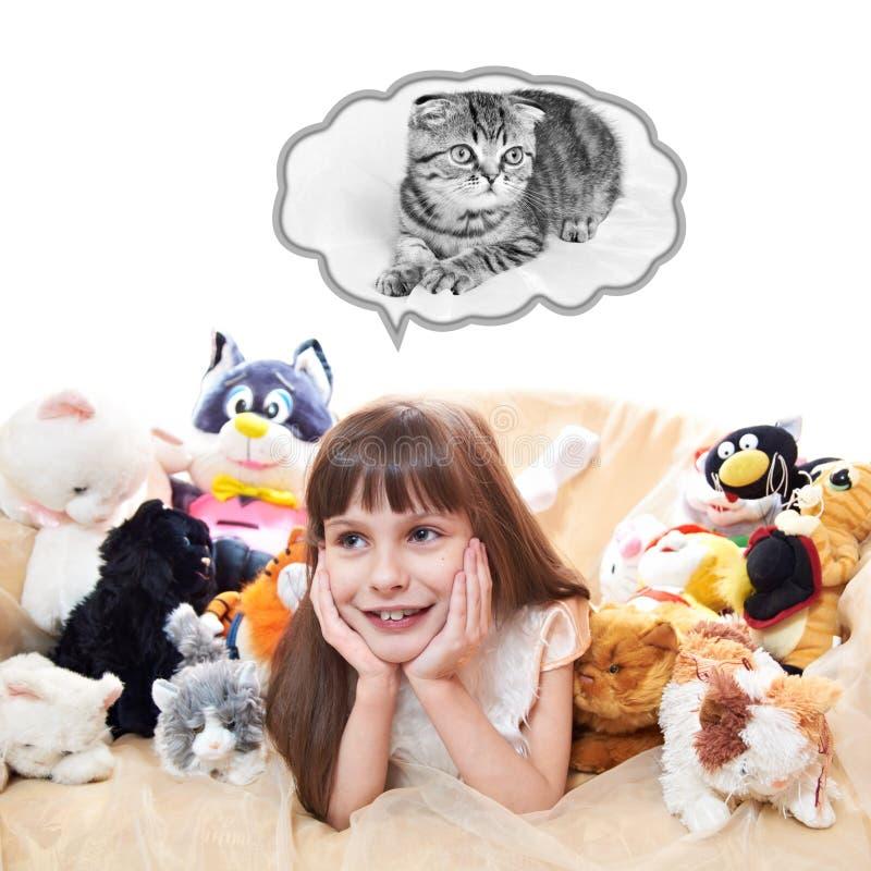 Una muchacha del niño con los gatos del juguete fotografía de archivo