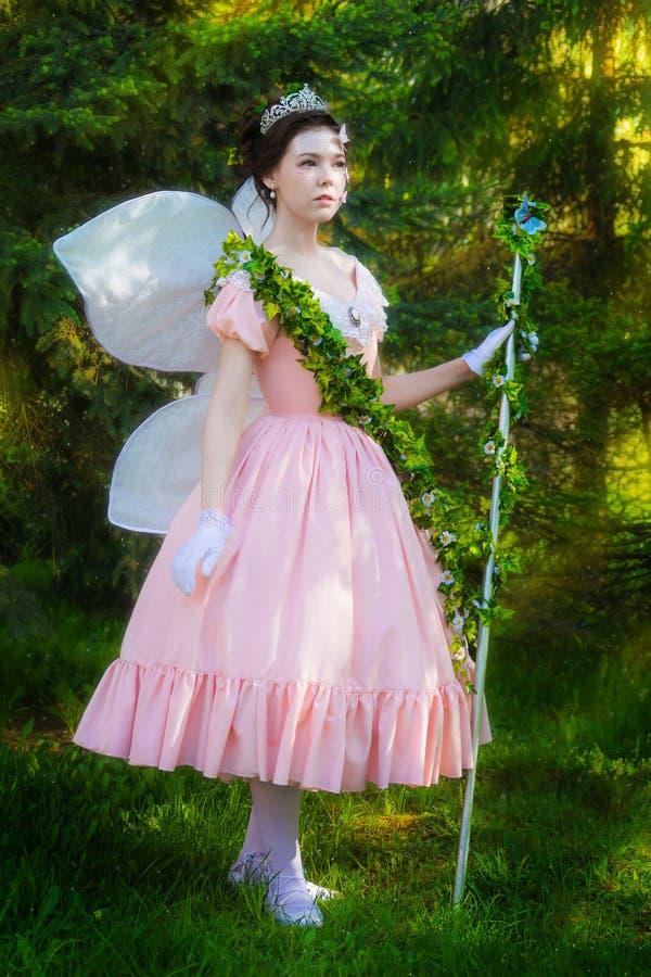 Una muchacha en una imagen del hada-cuento de una reina de hadas imagen de archivo