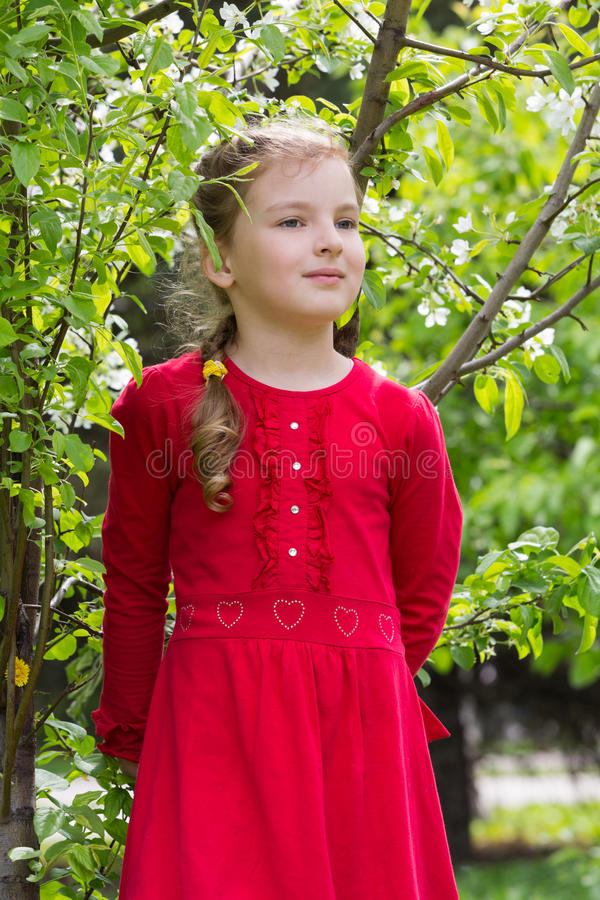 Una muchacha en un vestido rojo camina en el parque fotos de archivo libres de regalías