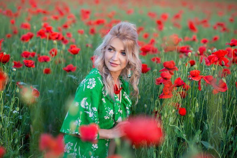 Una muchacha hermosa con el pelo largo y la piel natural, colocándose en un campo de amapolas rojas y sosteniendo una amapola roj fotos de archivo libres de regalías
