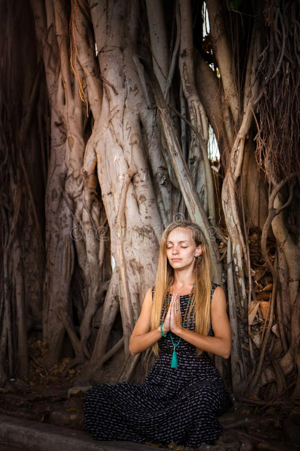 Una muchacha que medita debajo de un baniano fotos de archivo libres de regalías