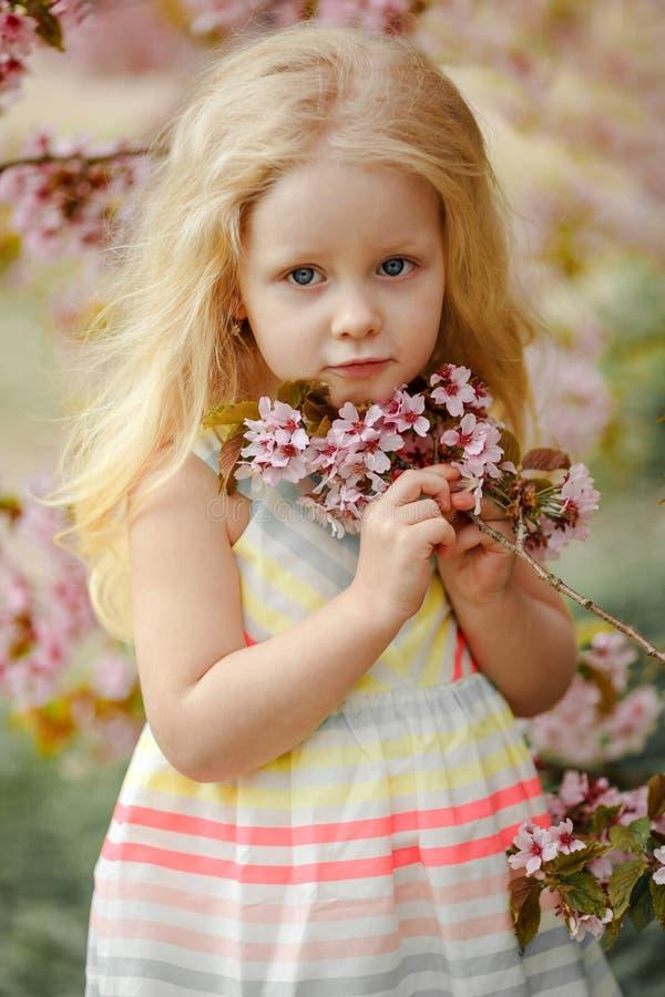 Una muchacha rubia encantadora linda con el pelo enorme en un spri rosado de Sakura imagen de archivo libre de regalías
