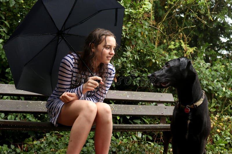 Una muchacha y su perro que juegan bajo la lluvia imagen de archivo