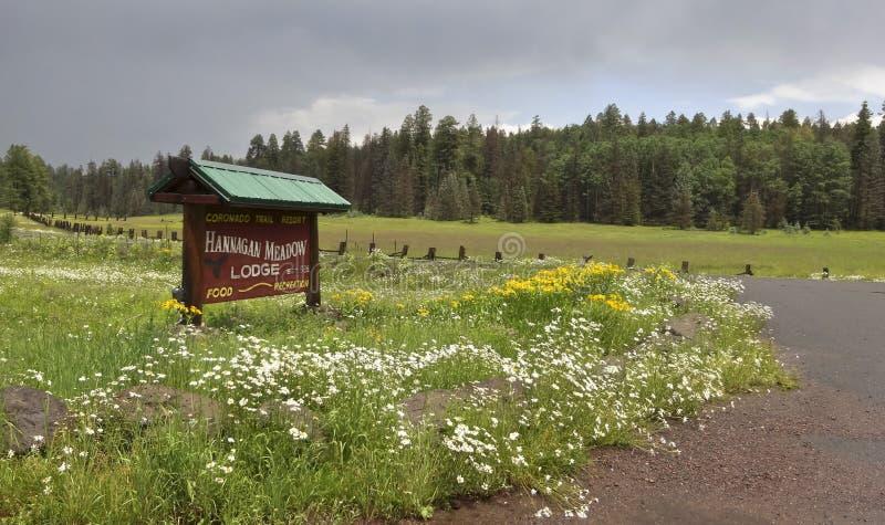 Una muestra de la casa de campo del prado de Hannagan cerca de alpino, Arizona fotos de archivo