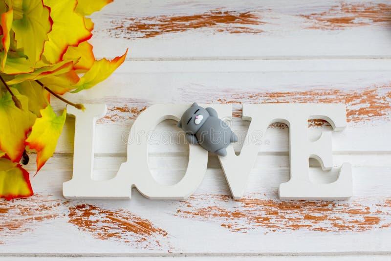 Una muestra del amor con gris en un gato de reclinación imágenes de archivo libres de regalías