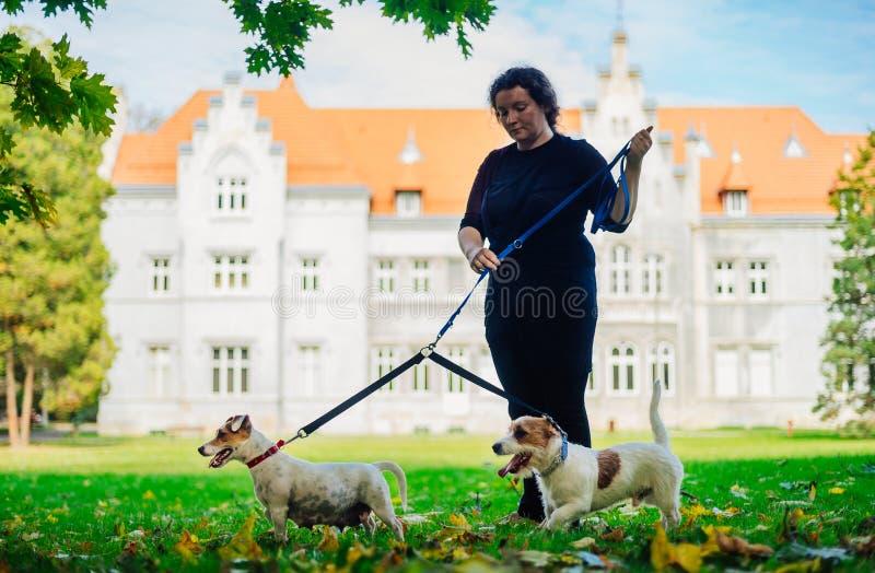 Una mujer con dos perros en un correo en un parque en otoño imagenes de archivo