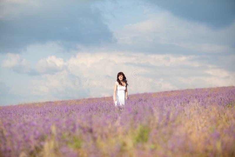 Una mujer embarazada en un campo de flores de la púrpura de la lavanda fotografía de archivo libre de regalías