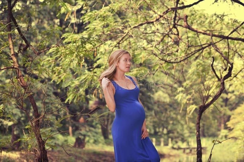 Una mujer embarazada en una alineada azul en la naturaleza imágenes de archivo libres de regalías