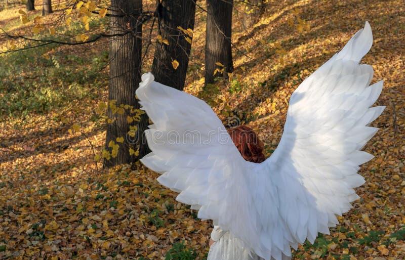 Una mujer en un traje blanco del ángel en un fondo del paisaje del otoño imágenes de archivo libres de regalías
