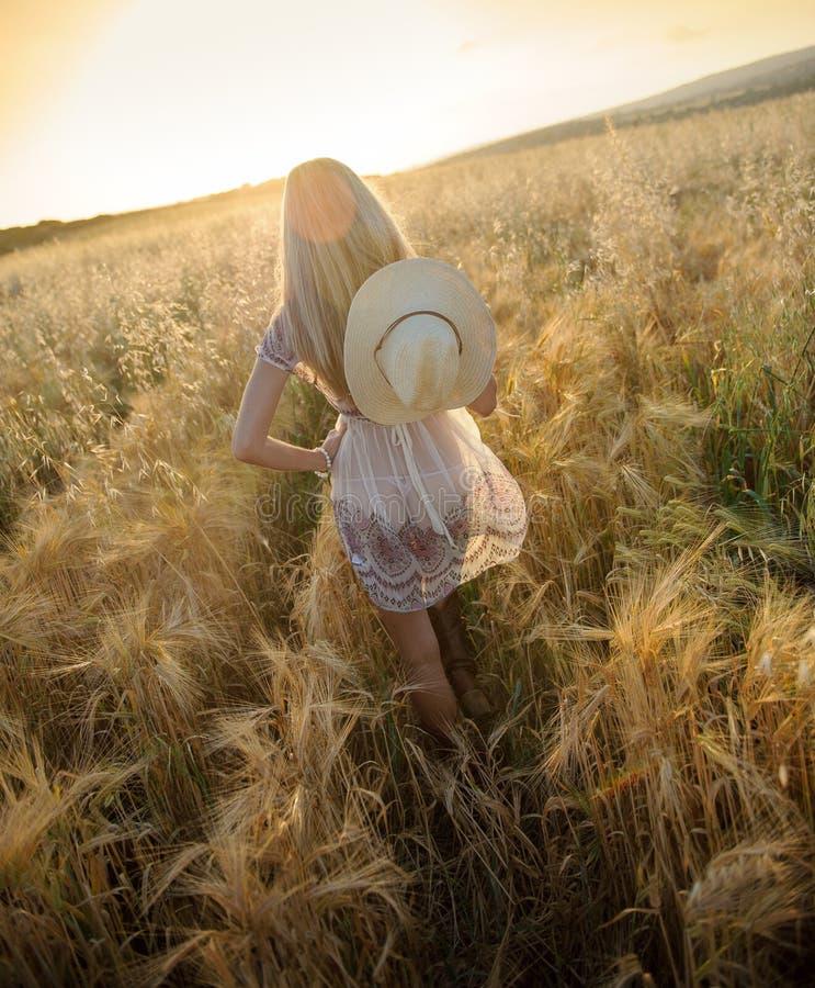 Una mujer hermosa en el campo de oro 6 del heno imagenes de archivo