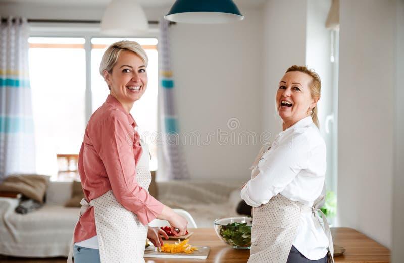 Una mujer joven con la madre mayor en casa, preparando la ensalada vegetal fotos de archivo libres de regalías