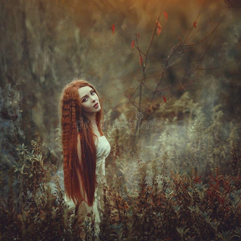 Una mujer joven hermosa con el pelo rojo muy largo como bruja camina a través del bosque del otoño imagenes de archivo