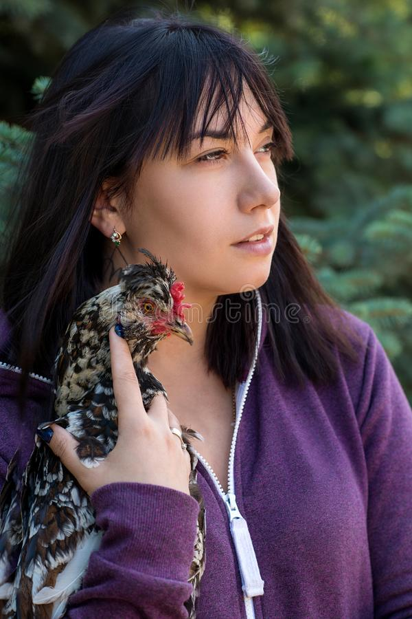 Una mujer joven sostiene un pollo abigarrado en sus manos Ella habla i imagenes de archivo