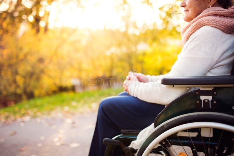 Una mujer mayor en silla de ruedas en naturaleza del otoño imagen de archivo
