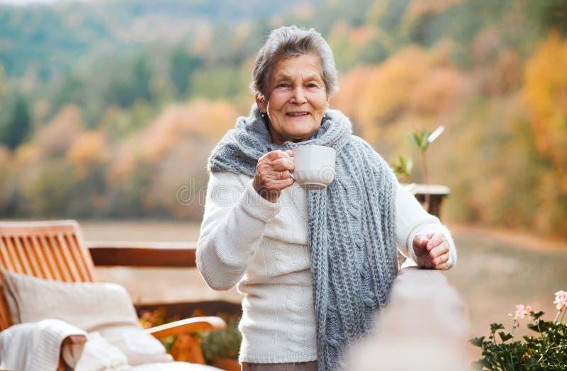 Una mujer mayor que se sienta al aire libre en una terraza adentro en un día soleado en otoño foto de archivo libre de regalías