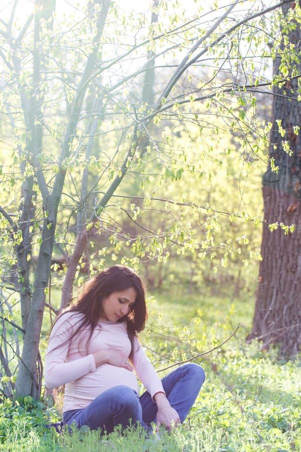 Una mujer se está sentando debajo de un árbol foto de archivo libre de regalías