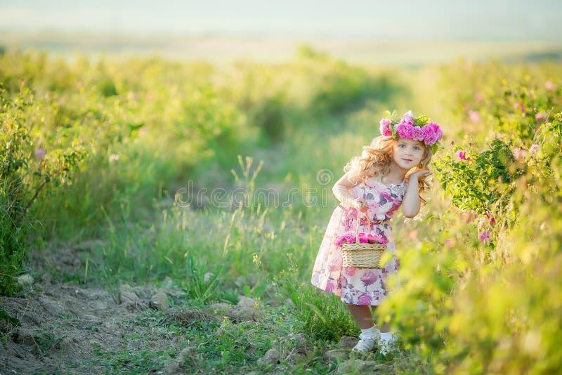 Una niña con el pelo rubio largo hermoso, vestido en un vestido ligero y una guirnalda de flores reales en su cabeza, en fotografía de archivo