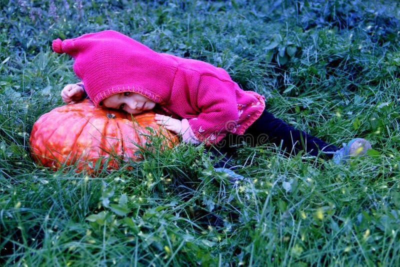 Una niña se acuesta en una calabaza enorme en un prado mágico El bebé está llevando un traje del gnomo Magia y luciérnagas Puede  fotografía de archivo