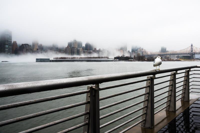 Una niebla densa cubrió New York City durante el día del ` s del invierno en enero de 2018 foto de archivo