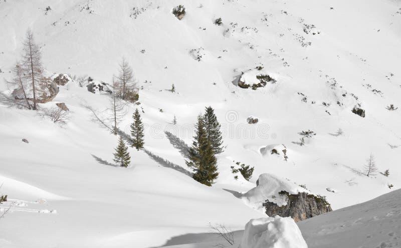 Una nieve blanca hermosa cubre la montaña entera en la mucha altitud fotos de archivo libres de regalías