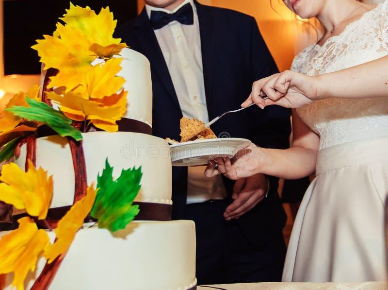 Una novia y un novio está cortando su pastel de bodas imágenes de archivo libres de regalías