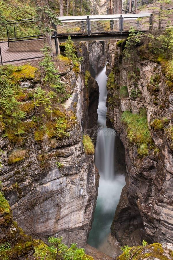 Una opinión del retrato de una cascada hermosa debajo de un puente en el alza del barranco de Maligne, exposición larga para crea fotos de archivo libres de regalías