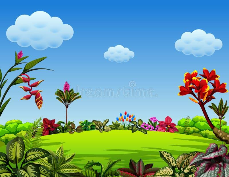 Una opinión hermosa del jardín con muchas hojas y variantes de las flores stock de ilustración
