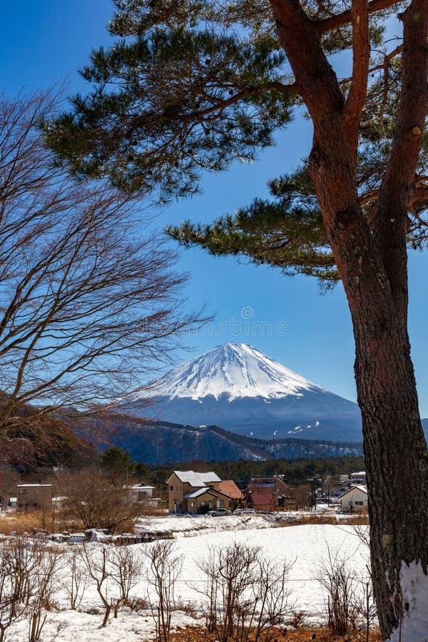Una opinión Mont Fuji en un día de invierno claro, del pueblo de Saiko cubierto por la nieve prístina en la región de cinco lagos fotografía de archivo