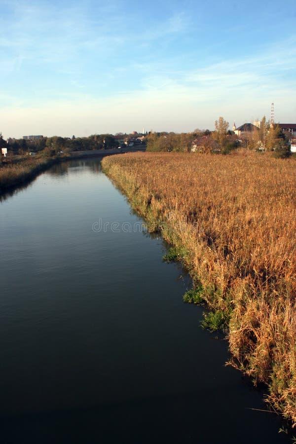 Una opinión sobre el río Begej, Zrenjanin, Serbia imagen de archivo libre de regalías