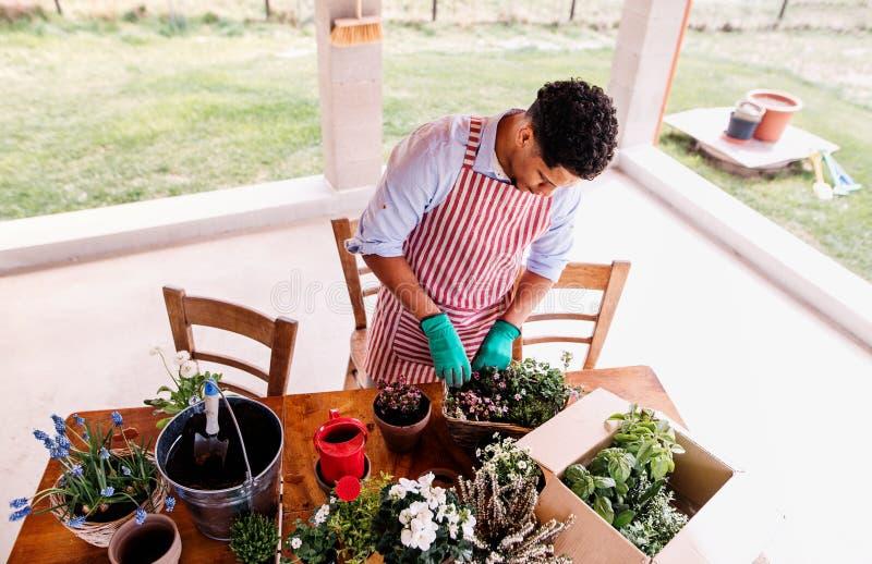 Una opinión superior el jardinero del hombre joven al aire libre en casa, plantando las flores imagen de archivo