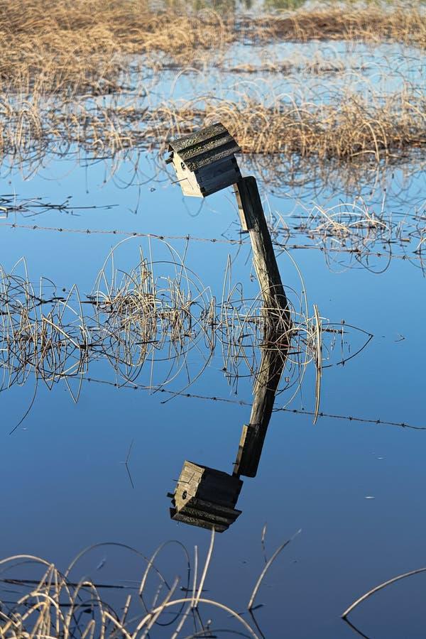 Una pajarera en una cerca con su reflexión en agua imagenes de archivo