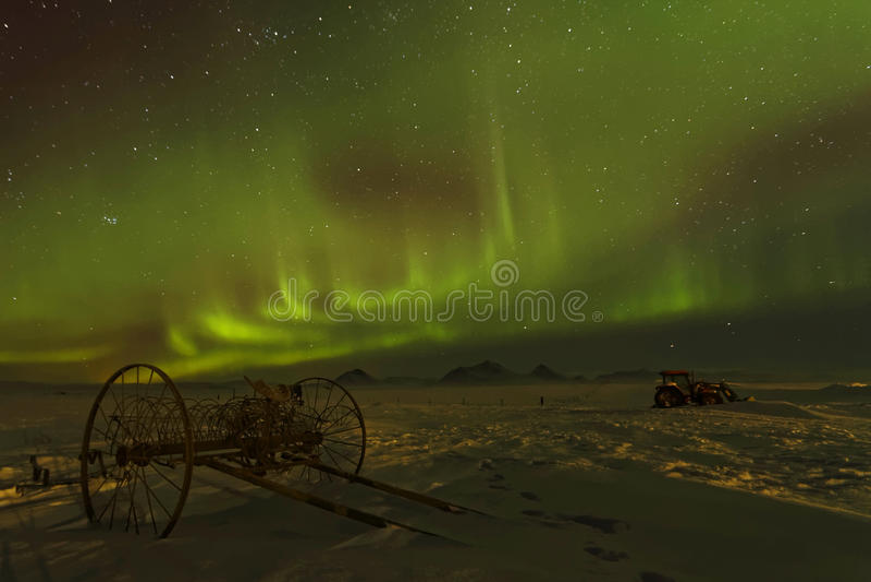 Una paleta debajo de los cielos verdes imagen de archivo libre de regalías